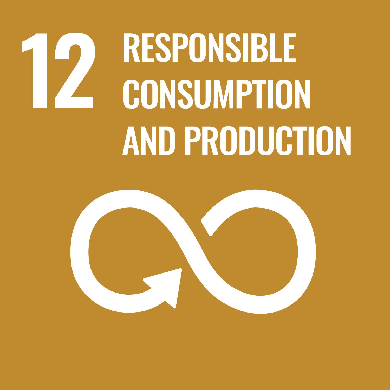 Sustainable Development Goal 12 - Xindao